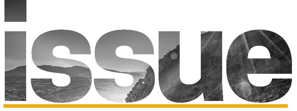EFI Issue logo