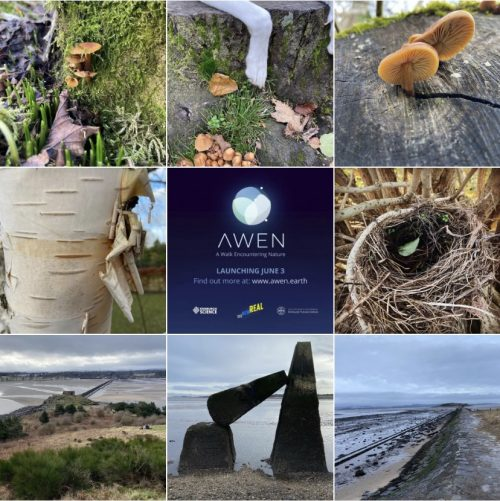 Walkabout App Encounters Nature and Climate